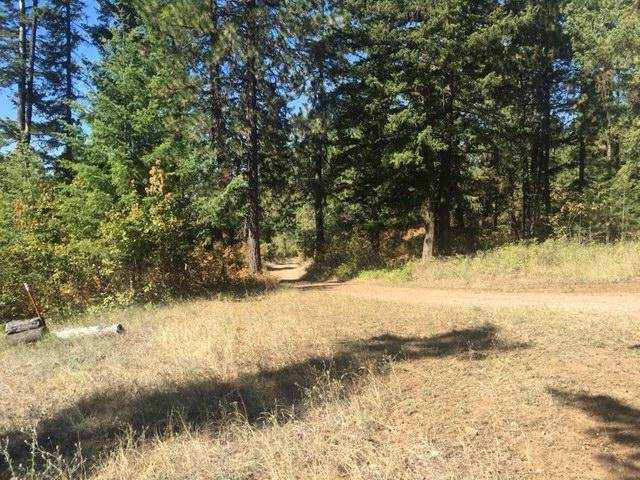 NNA Canton Lane, Harrison, ID 83833 (#20-10136) :: Embrace Realty Group
