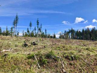 Tract 8 Hidden River Vista, St. Maries, ID 83861 (#20-10343) :: Five Star Real Estate Group