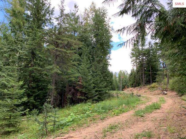 Lot 2 2nd Add Forest Knolls, Sandpoint, ID 83864 (#20-1050) :: Mandy Kapton | Windermere
