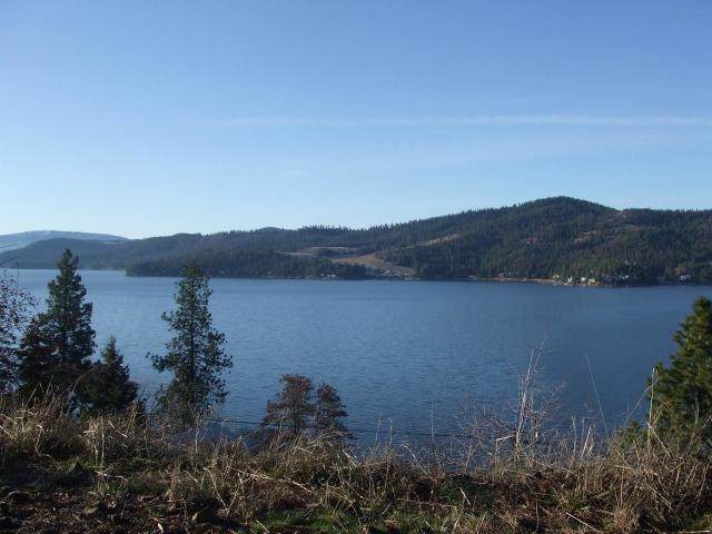 NKA Terrace Ct, Harrison, ID 83833 (#20-2558) :: HergGroup Coeur D'Alene