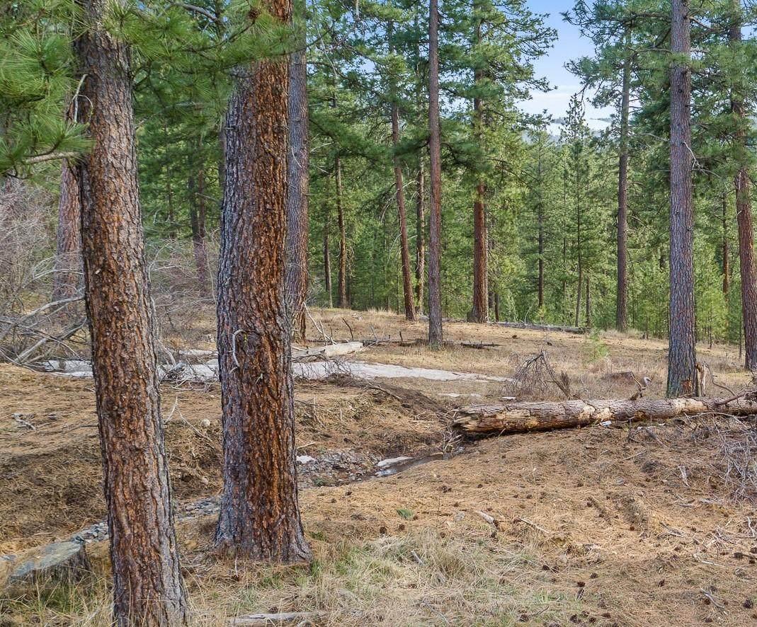 L3 B1 Cable Creek Dr - Photo 1