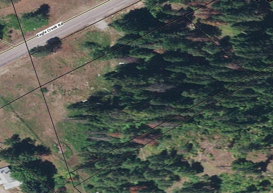 104 Eagle Creek Road - Photo 1