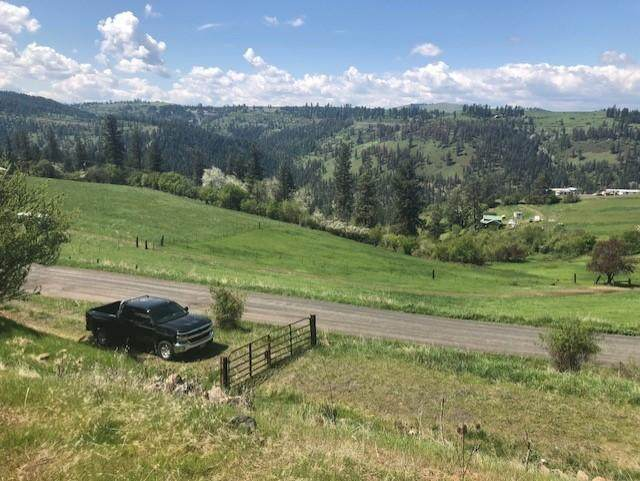 TBD Clearwater Drive, Harpster, ID 83552 (#20-6978) :: Prime Real Estate Group