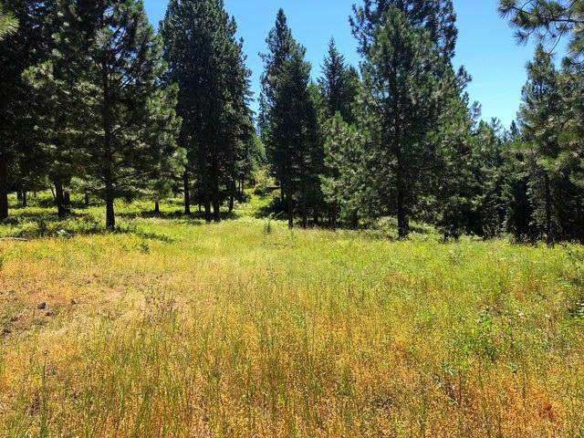 Lot 1 S Whistle Rd, Harrison, ID 83833 (#20-7186) :: Link Properties Group