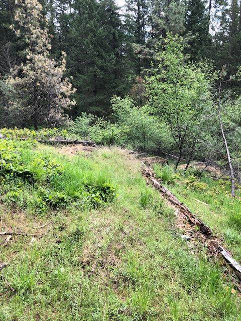 Avondale Loop, Hayden, ID 83835 (#20-910) :: Link Properties Group