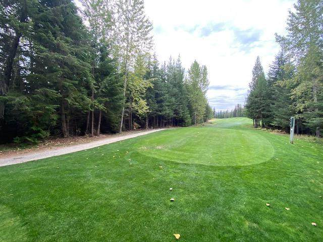 Blk 4 Lot1 Long Dr, Priest Lake, ID 83856 (#20-9805) :: Flerchinger Realty Group - Keller Williams Realty Coeur d'Alene