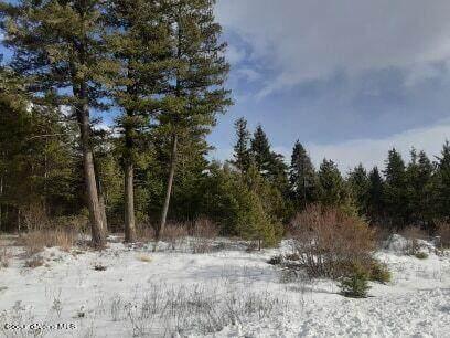 Spirit Lake Lt 4 Blk 87, Spirit Lake, ID 83869 (#21-1533) :: ExSell Realty Group