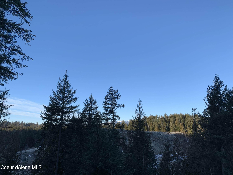 NNA  A2 Idaho Club Drive - Photo 9