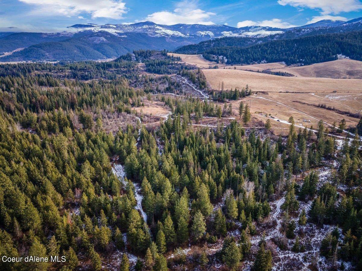 25408 Lake Ridge Rd - Photo 1