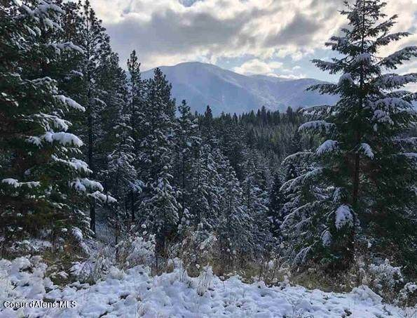 556 Woodland Drive, Bonners Ferry, ID 83805 (#21-5629) :: Amazing Home Network
