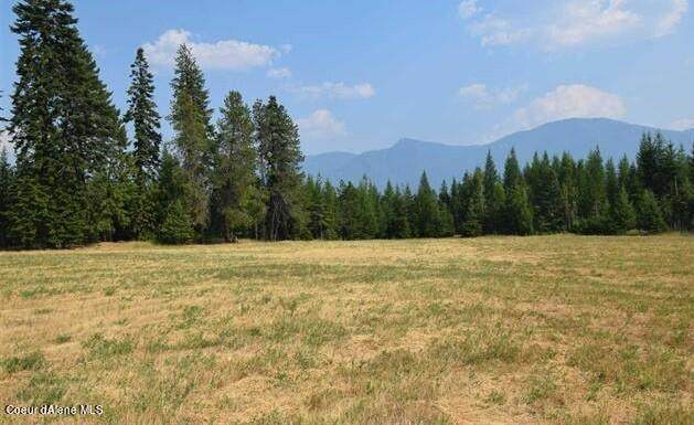NNA Paradise Valley Rd, Bonners Ferry, ID 83805 (#21-7605) :: Team Brown Realty