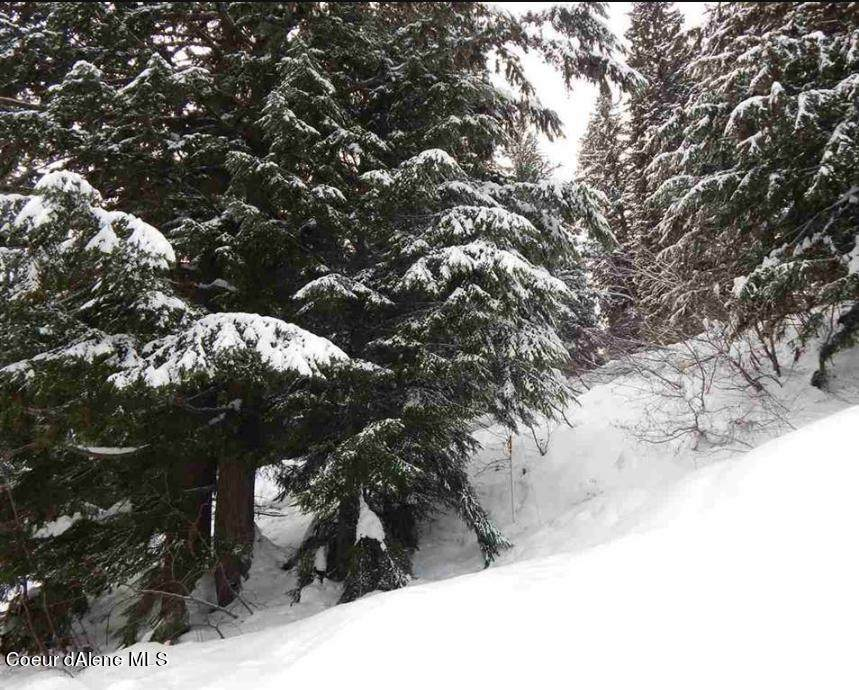 NKA Snowplow Road - Photo 1