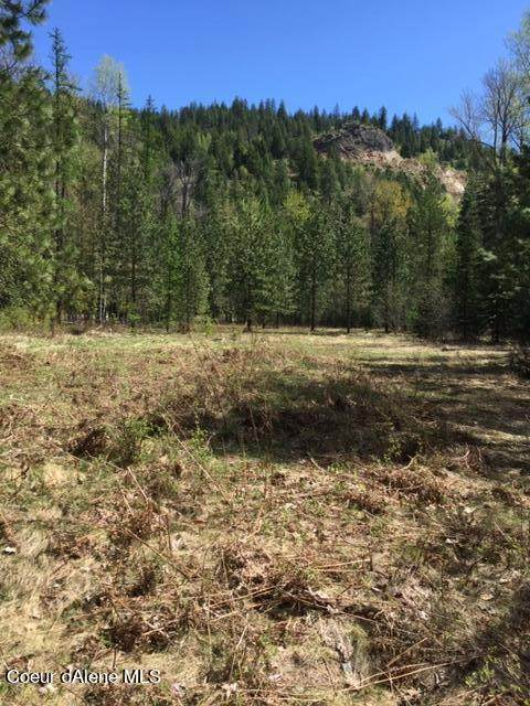 NNA Pack River Rd, Sandpoint, ID 83864 (#21-8018) :: ExSell Realty Group
