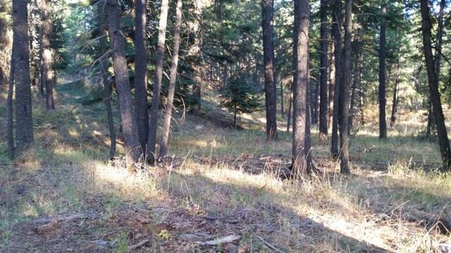 NKA Alina Drive (Lot3), Coeur d'Alene, ID 83814 (#18-11643) :: Groves Realty Group