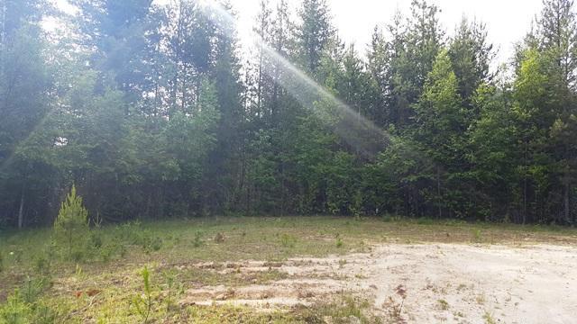 204 Silver Saddle Ct, Pinehurst, ID 83850 (#18-1465) :: Link Properties Group