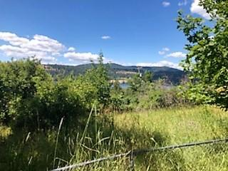 Lots 74,75 E Lincoln Ct, Harrison, ID 83833 (#18-8046) :: Link Properties Group