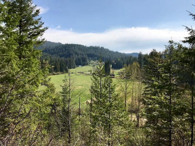 9848 S Fern Creek Rd, Cataldo, ID 83810 (#19-246) :: Keller Williams Realty Coeur d' Alene