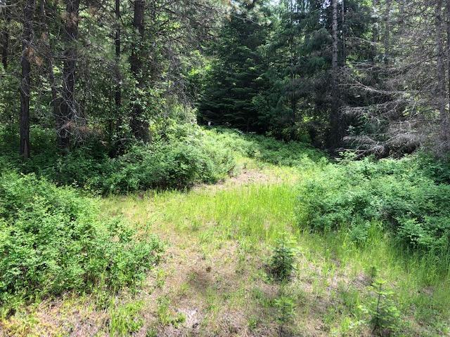 NKA Caribou Ridge Rd, Harrison, ID 83833 (#19-5863) :: Windermere Coeur d'Alene Realty