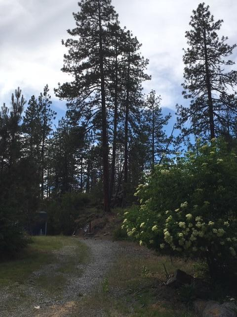 255 S Lower Crystal Bay Rd, Post Falls, ID 83854 (#19-5977) :: Windermere Coeur d'Alene Realty