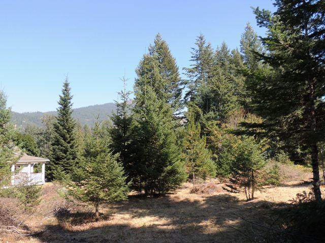 NKA N Spruce Ave, Bayview, ID 83803 (#20-9607) :: Amazing Home Network