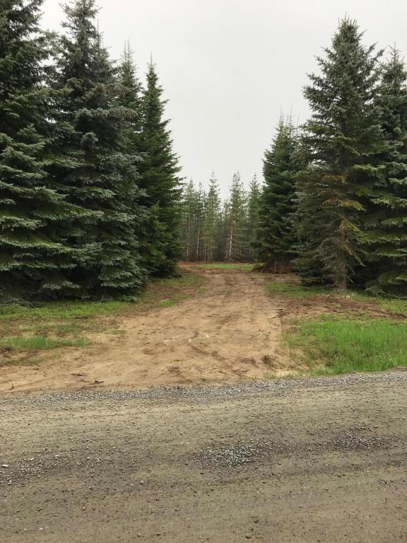 NNA Cougar Rd, Bonners Ferry, ID 83805 (#18-5611) :: Team Brown Realty
