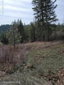 NKN Mountain Trail Ln, Newport, WA 99156 (#21-2733) :: Keller Williams Realty Coeur d' Alene