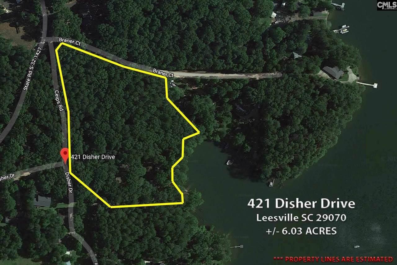 421 Disher Drive - Photo 1