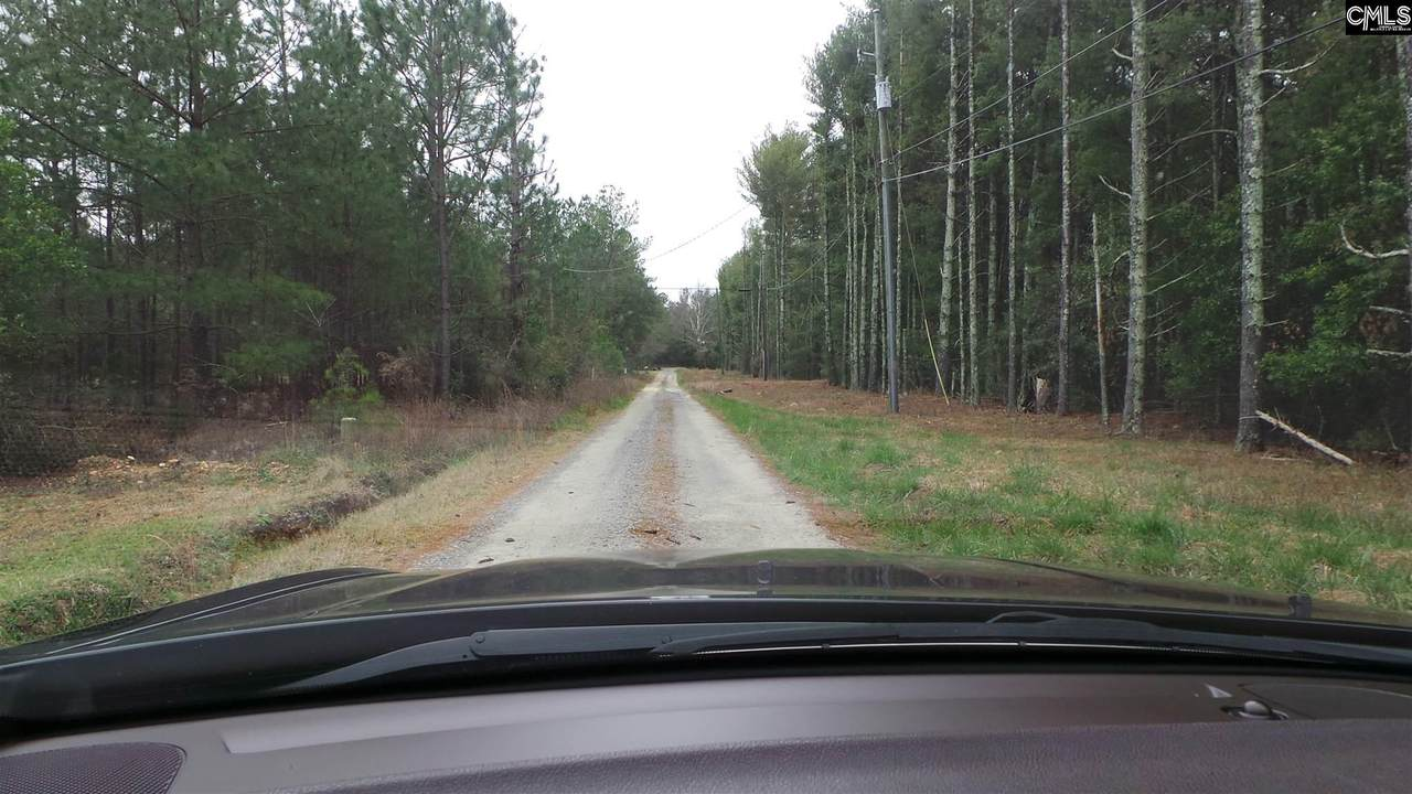 417 Scotch Pine Road - Photo 1