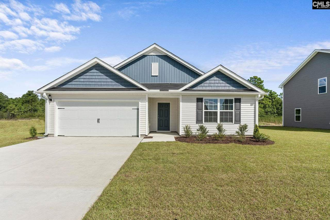 259 Common Reed Drive - Photo 1