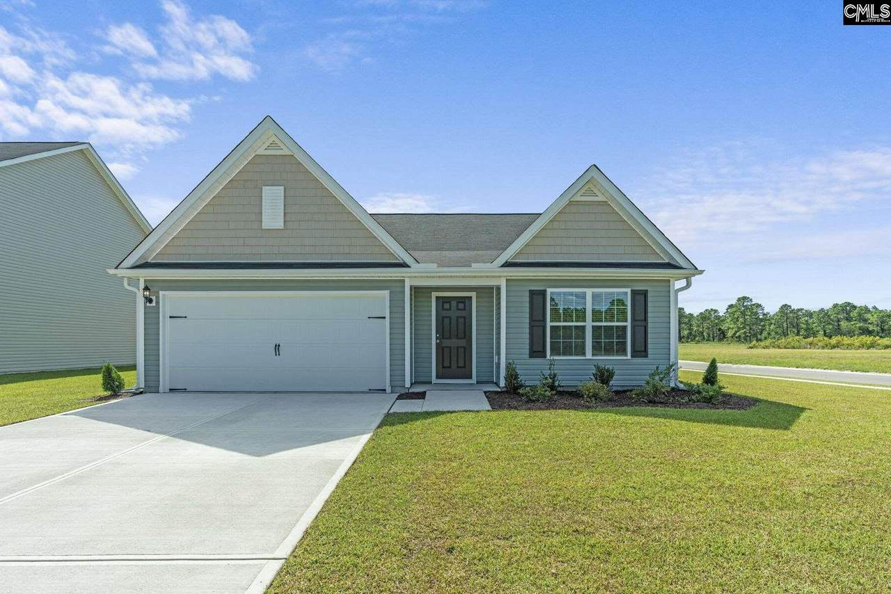 309 Common Reed Drive - Photo 1