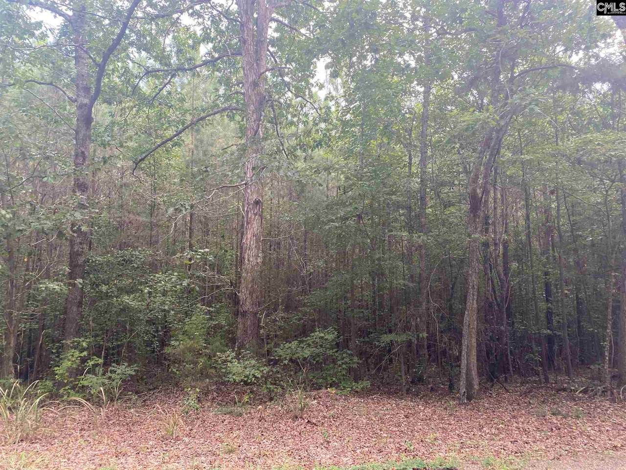 00 Kiblers Bridge Road Lot D - Photo 1