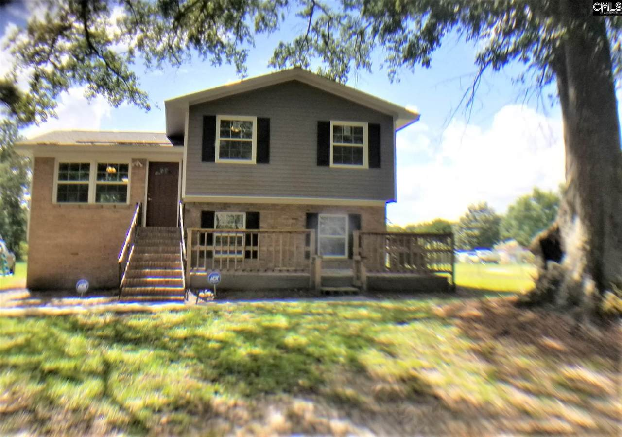 508 Congaree Church Road - Photo 1