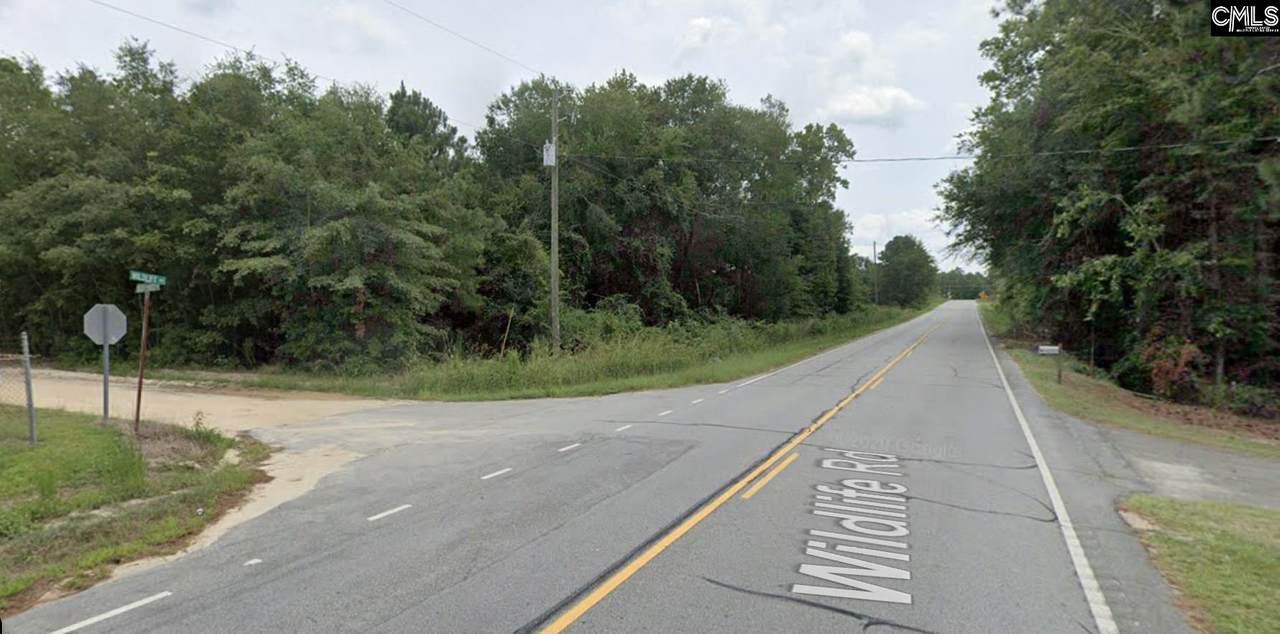 0 Wildlife Road - Photo 1