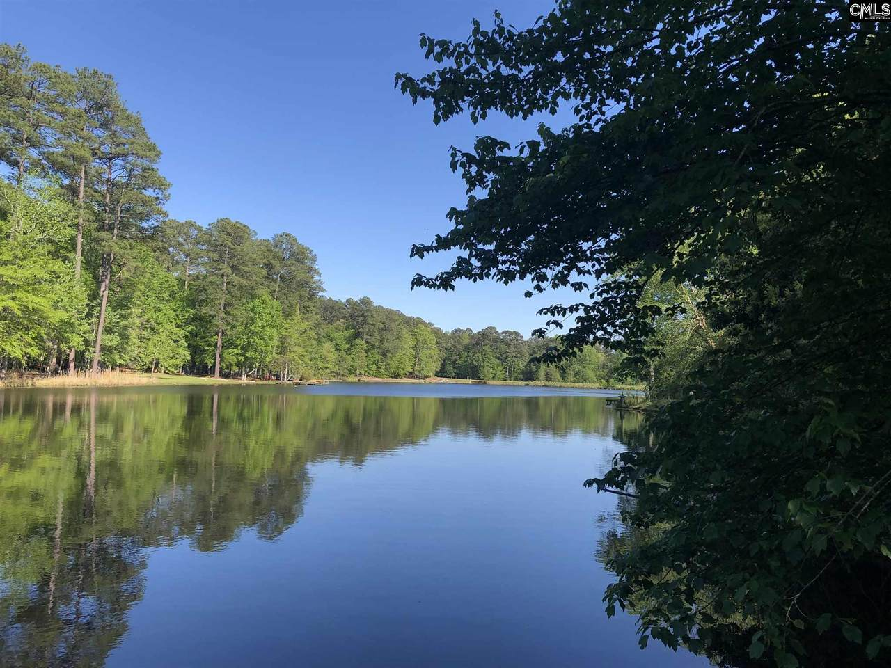 159 Lake Mallard Lane - Photo 1