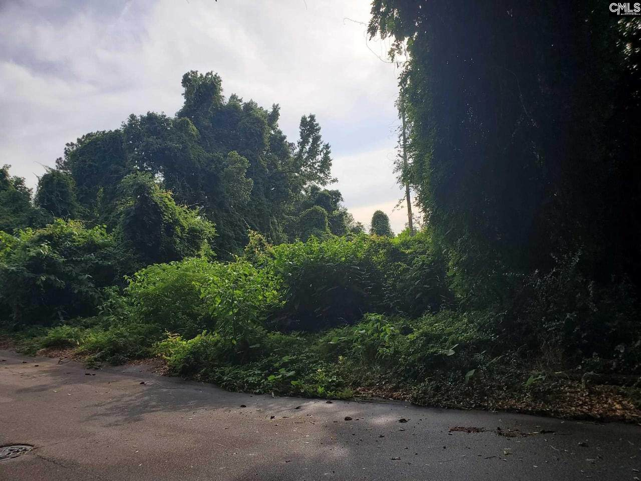437 Staffordshire Road - Photo 1