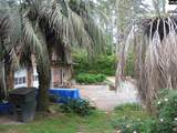 6812 Pine Tree Circle - Photo 4