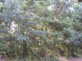 0 Botanical Parkway - Photo 2