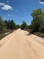 Pond Branch Road - Photo 6