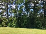 Lee State Park Road - Photo 1