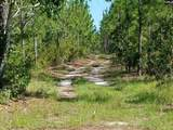 Old Chalk Bed Road - Photo 1