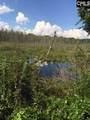TBD Miller Pond Road 1 - Photo 1