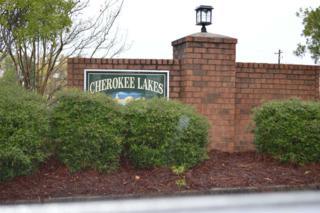132 Olivia Way 73/74, Lexington, SC 29072 (MLS #391196) :: Exit Real Estate Consultants