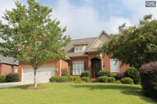 164 Mariners Creek Drive, Lexington, SC 29072 (MLS #409226) :: Exit Real Estate Consultants