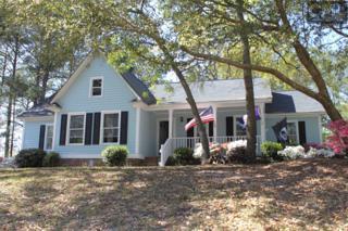 25 Halton Court, Columbia, SC 29223 (MLS #411610) :: Home Advantage Realty, LLC