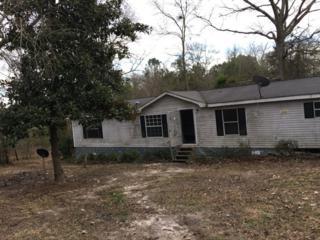 201 Fredonia Road, Leesville, SC 29070 (MLS #417350) :: Exit Real Estate Consultants