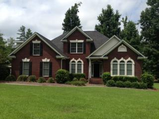 147 Rocky Meadow Drive, Gilbert, SC 29054 (MLS #417429) :: Exit Real Estate Consultants