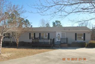 352 Peeler Court, Gaston, SC 29053 (MLS #417612) :: Exit Real Estate Consultants