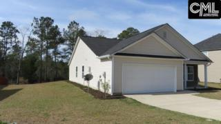 539 Colony Lakes Drive, Lexington, SC 29073 (MLS #418800) :: Exit Real Estate Consultants