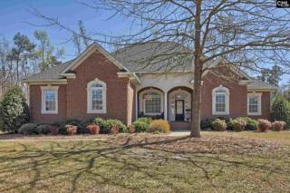 324 Rocky Meadow Drive, Gilbert, SC 29054 (MLS #419568) :: Exit Real Estate Consultants