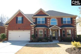 286 Hilton Village Drive, Chapin, SC 29036 (MLS #419956) :: Home Advantage Realty, LLC